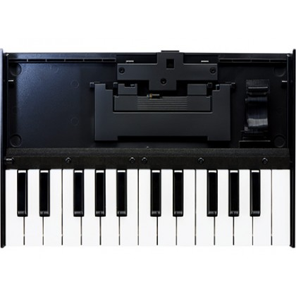 Roland A-01K Limited Edition Midi Controller Synthesizer with Bluetooth Control Black (A01K A01)