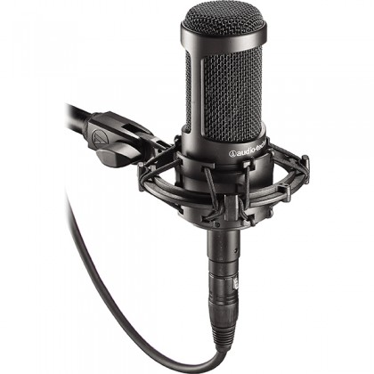 Audio Technica AT2035 Cardiod Condenser Microphone Basic Package Mic Only (AT 2035)