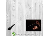 Student Conductor Baton Conducting Stick Conduct Orchestra Black